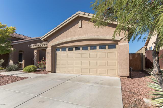 40750 N Trailhead Way, Phoenix, AZ 85086 (MLS #5848463) :: The Wehner Group