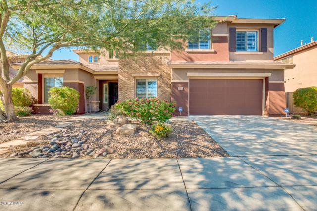 39702 N Belfair Way, Phoenix, AZ 85086 (MLS #5848474) :: The Wehner Group