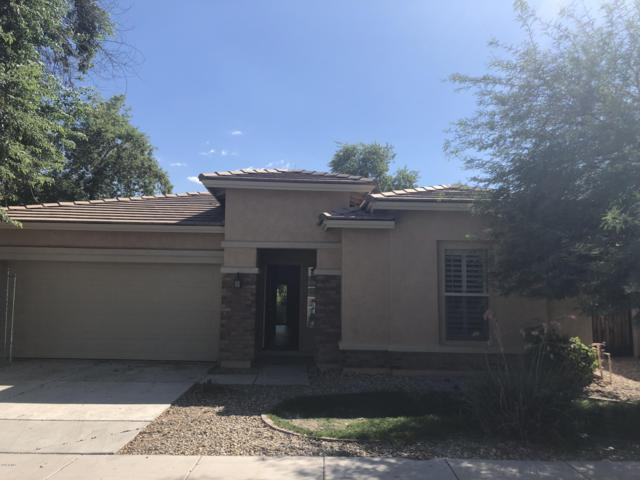 7303 W Midway Avenue, Glendale, AZ 85303 (MLS #5848492) :: The Wehner Group