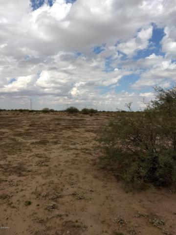 5000 S Toltec Buttes Rd., Eloy, AZ 85131 (MLS #5848518) :: Yost Realty Group at RE/MAX Casa Grande