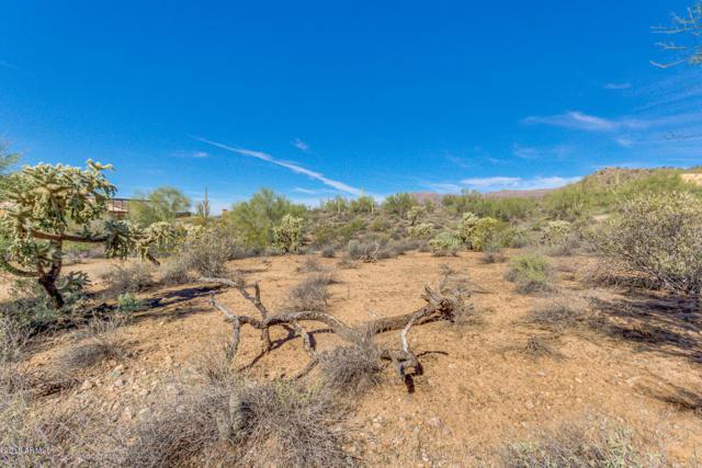 0 Mesa Del Oro Estate, Gold Canyon, AZ 85118 (MLS #5848531) :: Riddle Realty