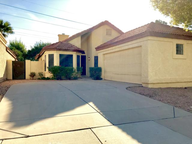 1605 E Cindy Street, Chandler, AZ 85225 (MLS #5848547) :: Keller Williams Realty Phoenix