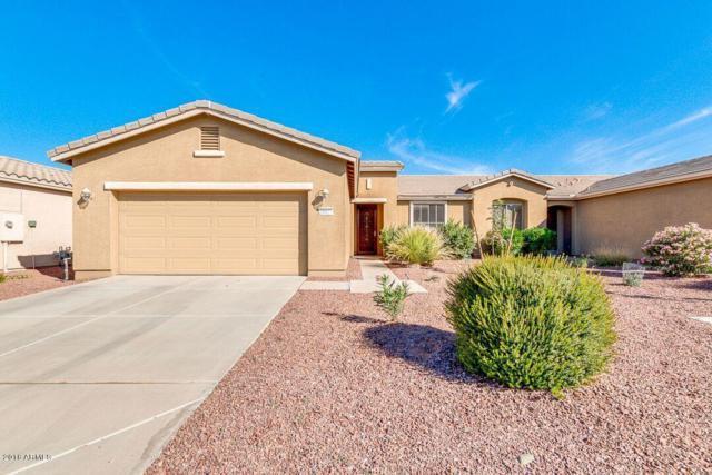 20417 N Lemon Drop Drive, Maricopa, AZ 85138 (MLS #5848628) :: Yost Realty Group at RE/MAX Casa Grande