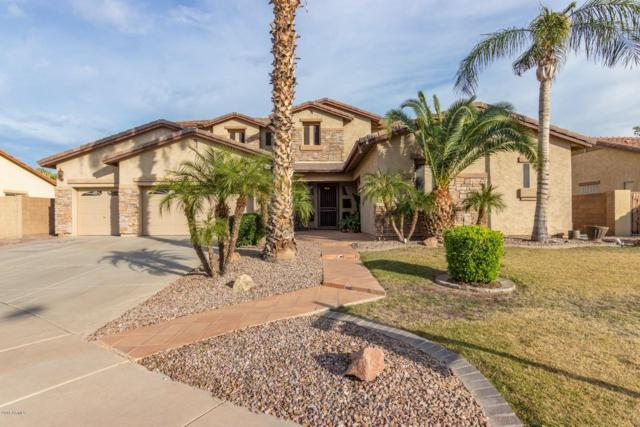 1329 S Iowa Court, Chandler, AZ 85286 (MLS #5848635) :: Revelation Real Estate