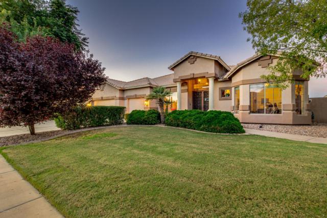 58 E Phelps Street, Gilbert, AZ 85295 (MLS #5848636) :: Arizona 1 Real Estate Team