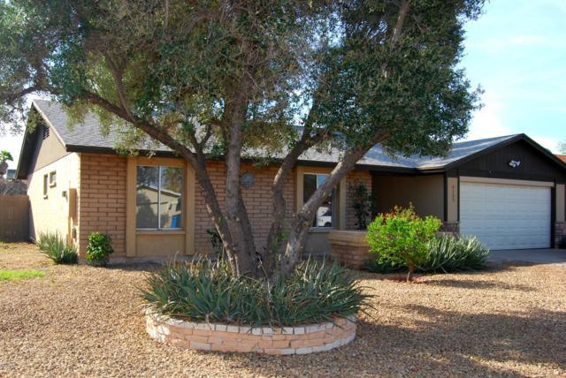 4109 W Wood Drive, Phoenix, AZ 85029 (MLS #5848637) :: Yost Realty Group at RE/MAX Casa Grande