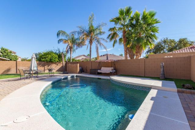 8155 E Posada Avenue, Mesa, AZ 85212 (MLS #5848645) :: The Everest Team at My Home Group