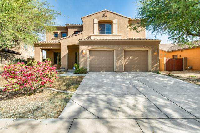 26477 N 84TH Avenue, Peoria, AZ 85383 (MLS #5848650) :: The Everest Team at My Home Group