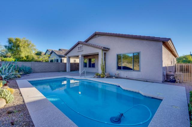 26706 N 64TH Lane, Phoenix, AZ 85083 (MLS #5848669) :: The Everest Team at My Home Group