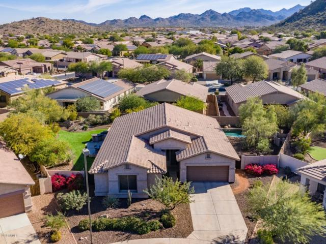 18643 W Lodge Drive, Goodyear, AZ 85338 (MLS #5848689) :: The Everest Team at My Home Group