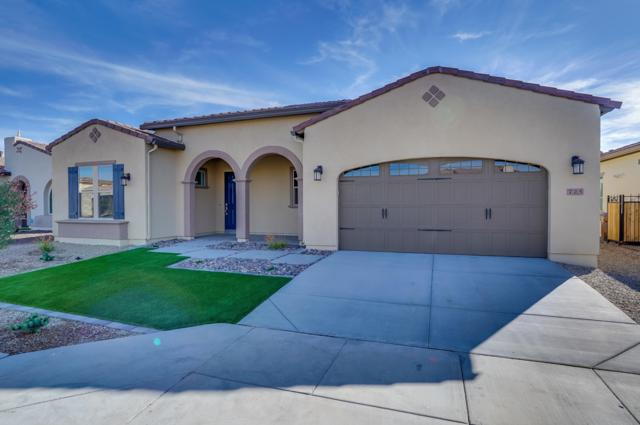 725 E Fruitstand Way, San Tan Valley, AZ 85140 (MLS #5848690) :: The Everest Team at My Home Group