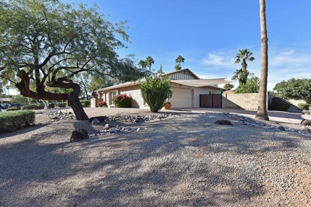 12254 N 59TH Street, Scottsdale, AZ 85254 (MLS #5848695) :: Yost Realty Group at RE/MAX Casa Grande