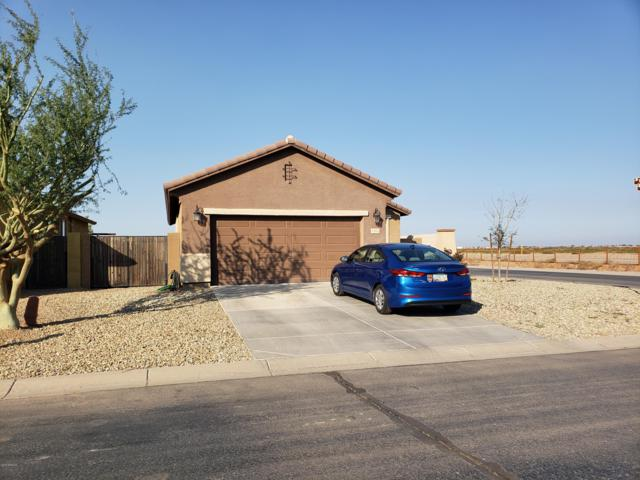 43924 W Palo Cedro Road, Maricopa, AZ 85138 (MLS #5848702) :: Arizona 1 Real Estate Team