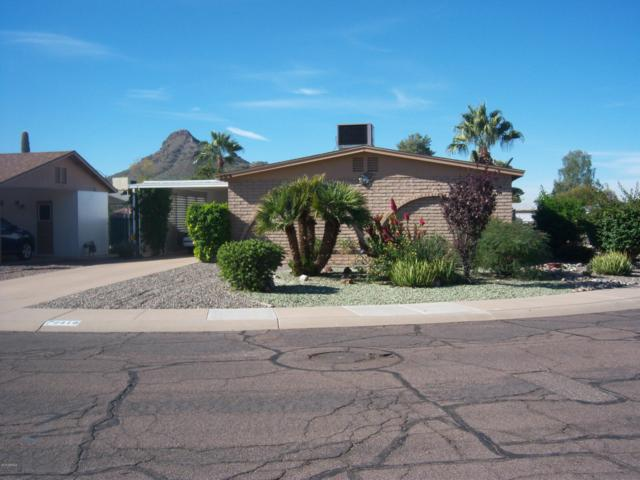 2319 E Betty Elyse Lane, Phoenix, AZ 85022 (MLS #5848740) :: Keller Williams Realty Phoenix
