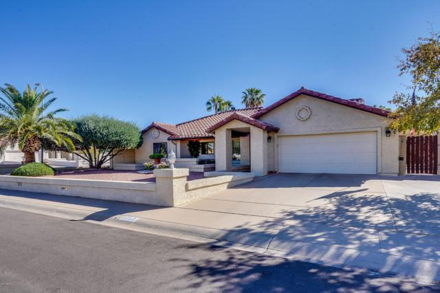 7717 W Columbine Drive, Peoria, AZ 85381 (MLS #5848765) :: Power Realty Group Model Home Center