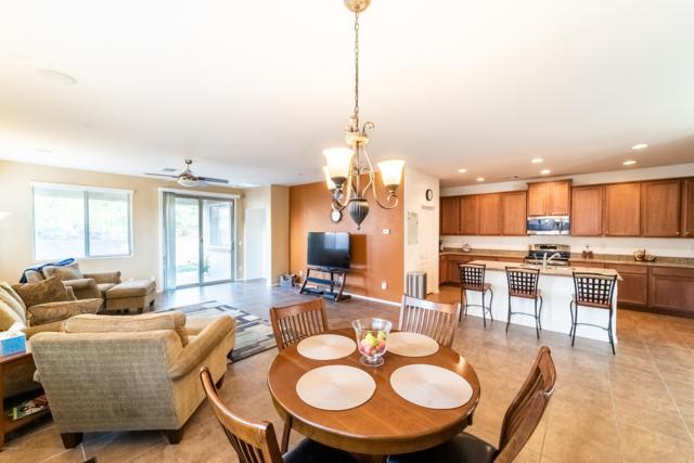 7668 S Sorrell Lane, Gilbert, AZ 85298 (MLS #5848767) :: Arizona 1 Real Estate Team