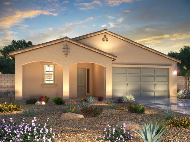 18800 W Mescal Street, Surprise, AZ 85388 (MLS #5848780) :: Conway Real Estate