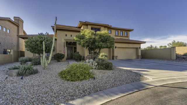 8035 E Twisted Leaf Drive, Gold Canyon, AZ 85118 (MLS #5848781) :: Revelation Real Estate