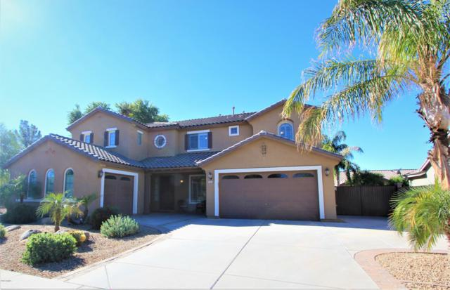 19047 E Raven Drive, Queen Creek, AZ 85142 (MLS #5848786) :: Arizona 1 Real Estate Team