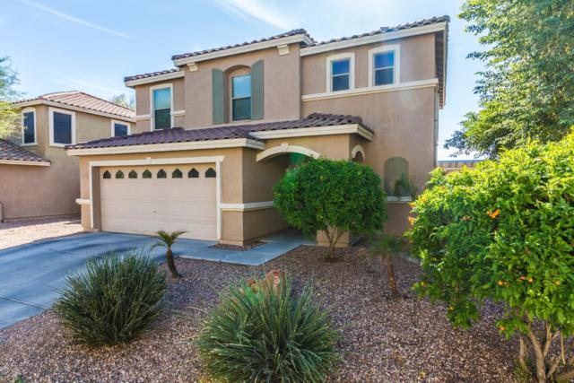 17061 W Marconi Avenue, Surprise, AZ 85388 (MLS #5848807) :: Conway Real Estate
