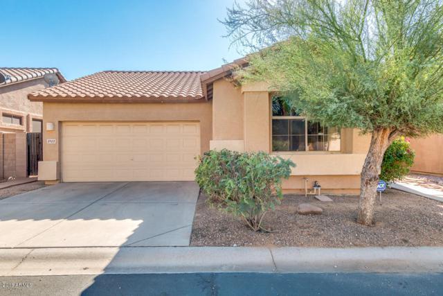 8923 E Capri Avenue, Mesa, AZ 85208 (MLS #5848836) :: Power Realty Group Model Home Center