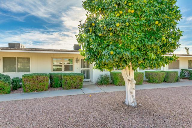 10514 W Coggins Drive, Sun City, AZ 85351 (MLS #5848853) :: Keller Williams Realty Phoenix