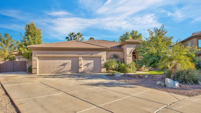 1497 E Arabian Court, Gilbert, AZ 85296 (MLS #5848871) :: Kepple Real Estate Group