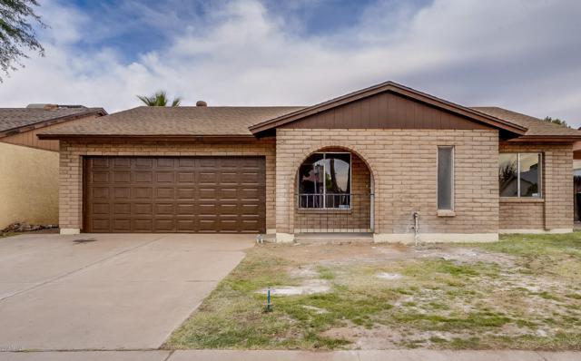 530 E Oraibi Drive, Phoenix, AZ 85024 (MLS #5848879) :: Arizona 1 Real Estate Team