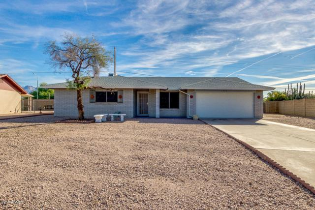 1529 S Mara Drive, Apache Junction, AZ 85120 (MLS #5848912) :: Yost Realty Group at RE/MAX Casa Grande