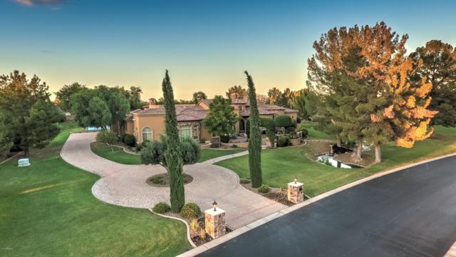 28 E Oakwood Hills Drive, Chandler, AZ 85248 (MLS #5848927) :: Power Realty Group Model Home Center