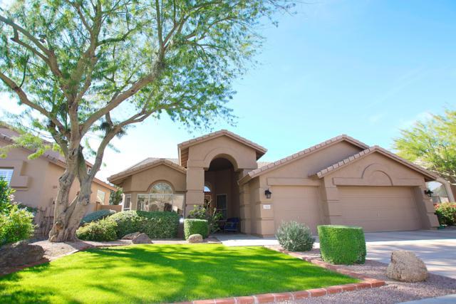 25810 N 45TH Way, Phoenix, AZ 85050 (MLS #5848929) :: Arizona 1 Real Estate Team