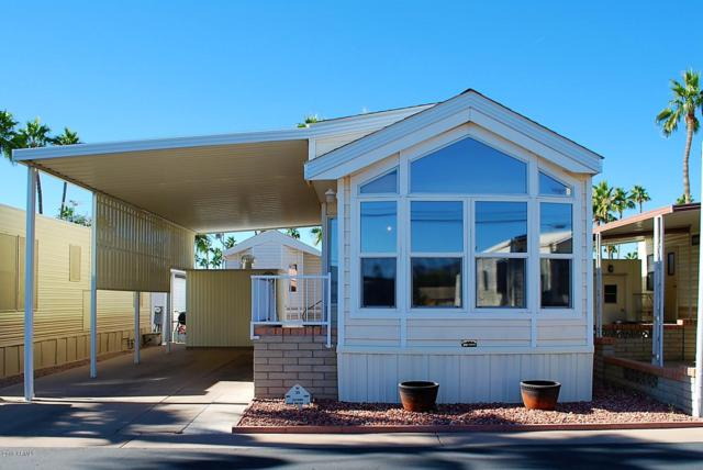 35 S Kiowa Circle, Apache Junction, AZ 85119 (MLS #5848932) :: Yost Realty Group at RE/MAX Casa Grande