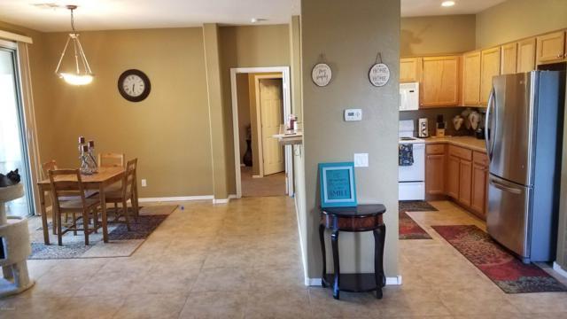 1335 E June Street #202, Mesa, AZ 85203 (MLS #5848937) :: Power Realty Group Model Home Center