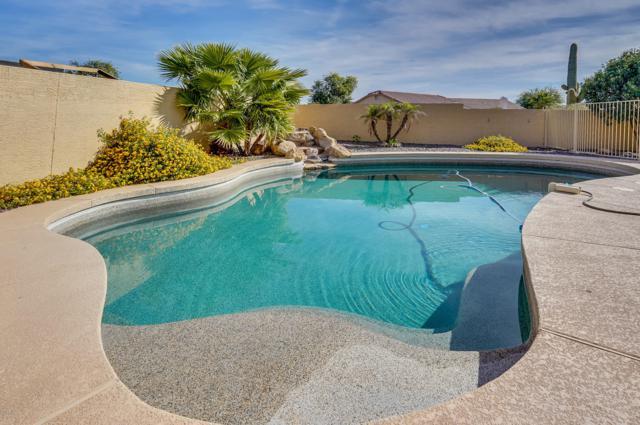 9397 E Del Monte Avenue, Gold Canyon, AZ 85118 (MLS #5848945) :: Revelation Real Estate
