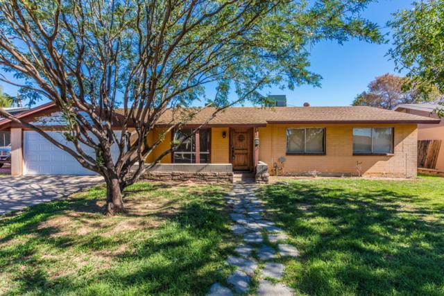7349 N 38TH Drive, Phoenix, AZ 85051 (MLS #5848946) :: Yost Realty Group at RE/MAX Casa Grande