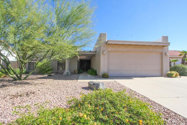 26033 S Foxglenn Drive, Sun Lakes, AZ 85248 (MLS #5848962) :: Yost Realty Group at RE/MAX Casa Grande