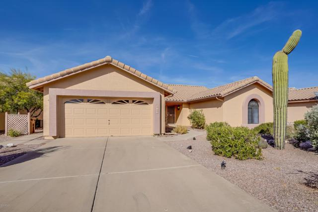 8122 E Lavender Drive, Gold Canyon, AZ 85118 (MLS #5848976) :: Yost Realty Group at RE/MAX Casa Grande