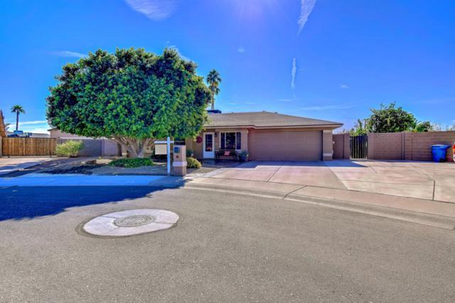 3400 N Cortez Court, Chandler, AZ 85224 (MLS #5848994) :: Power Realty Group Model Home Center