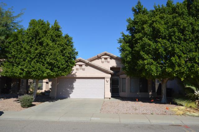 4640 E Briarwood Terrace, Phoenix, AZ 85048 (MLS #5849046) :: Power Realty Group Model Home Center