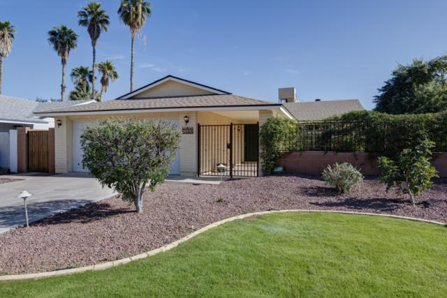 2209 N Pennington Drive, Chandler, AZ 85224 (MLS #5849078) :: Keller Williams Realty Phoenix