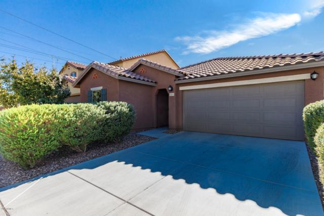 12019 W Range Mule Drive, Peoria, AZ 85383 (MLS #5849117) :: The Results Group