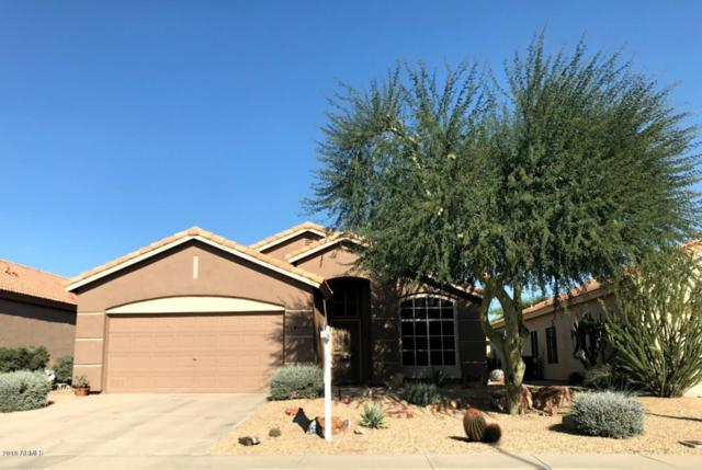 19929 N 91st Lane, Peoria, AZ 85382 (MLS #5849126) :: Conway Real Estate