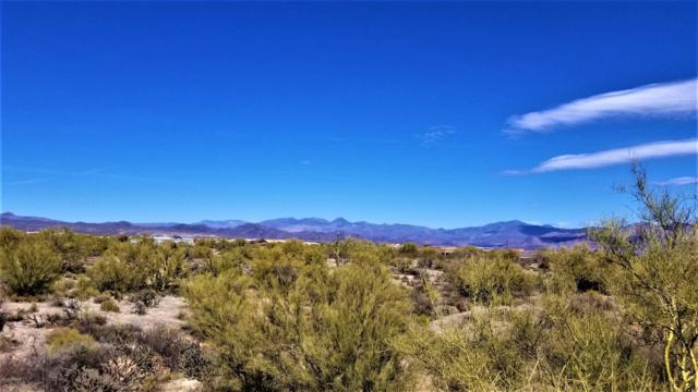 142XX E Peak View Road, Scottsdale, AZ 85262 (MLS #5849147) :: Riddle Realty