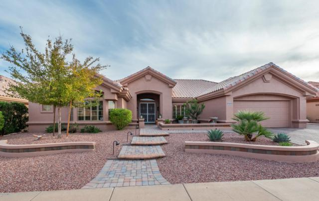 14033 W Parada Drive, Sun City West, AZ 85375 (MLS #5849186) :: Arizona 1 Real Estate Team