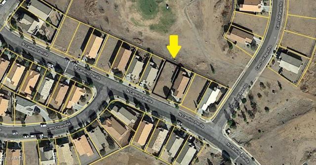 xxx Camino Perilla, Douglas, AZ 85607 (MLS #5849190) :: CC & Co. Real Estate Team