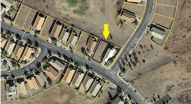 xxx Camino Perilla, Douglas, AZ 85607 (MLS #5849198) :: RE/MAX Excalibur