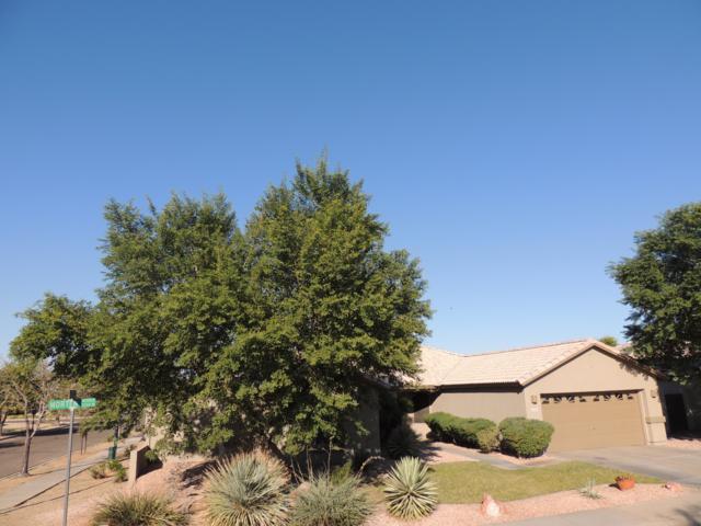 5340 W Morten Avenue, Glendale, AZ 85301 (MLS #5849222) :: The Laughton Team