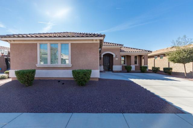15831 W Shaw Butte Drive, Surprise, AZ 85379 (MLS #5849273) :: The Laughton Team