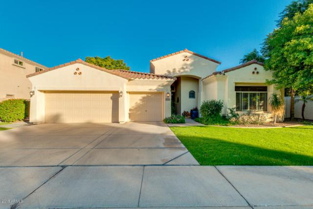 4351 S Purple Sage Place, Chandler, AZ 85248 (MLS #5849289) :: Revelation Real Estate