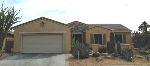 18909 N Alameda Drive, Surprise, AZ 85387 (MLS #5849301) :: The Laughton Team